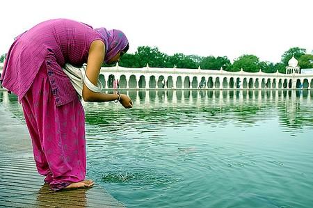 Ecologie eau