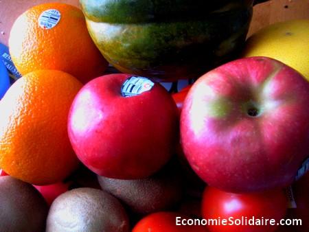 Pour et Contre OGM