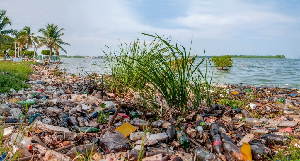 Conséquences de la pollution de l'eau sur la santé et l'environnement
