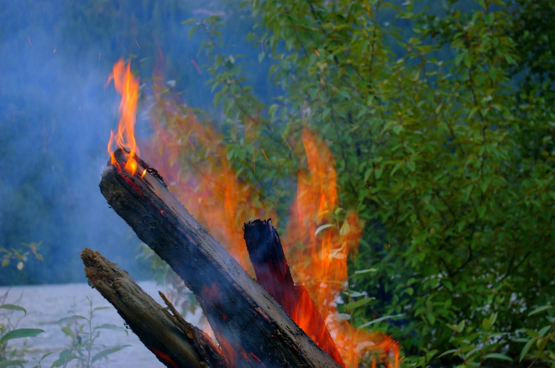 peut-on bruler du bois en france?
