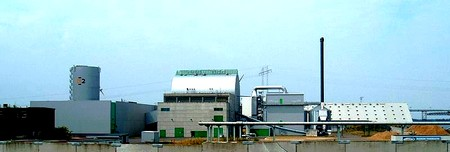 cogeneration biomasse