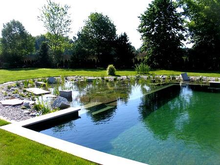 piscine biologique naturelle