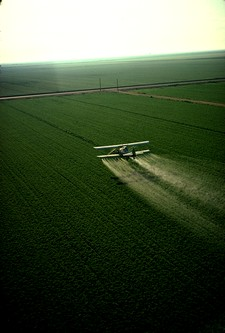 pollution des pesticides