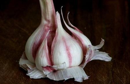 ail rose, antibiotique naturel
