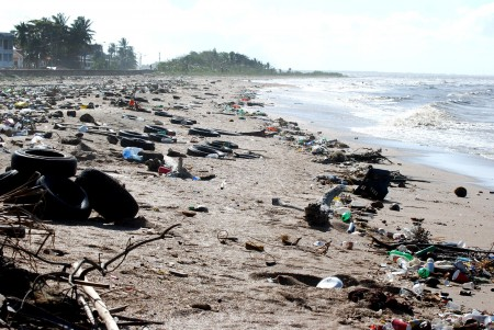 Pollution en Guyane