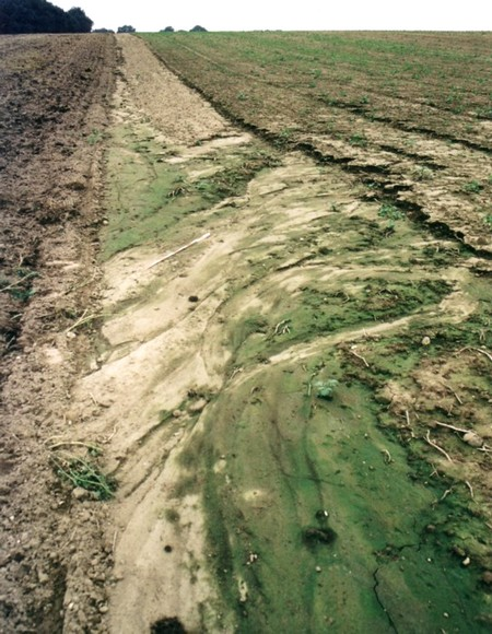 Érosion des terres
