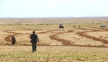 La desertification